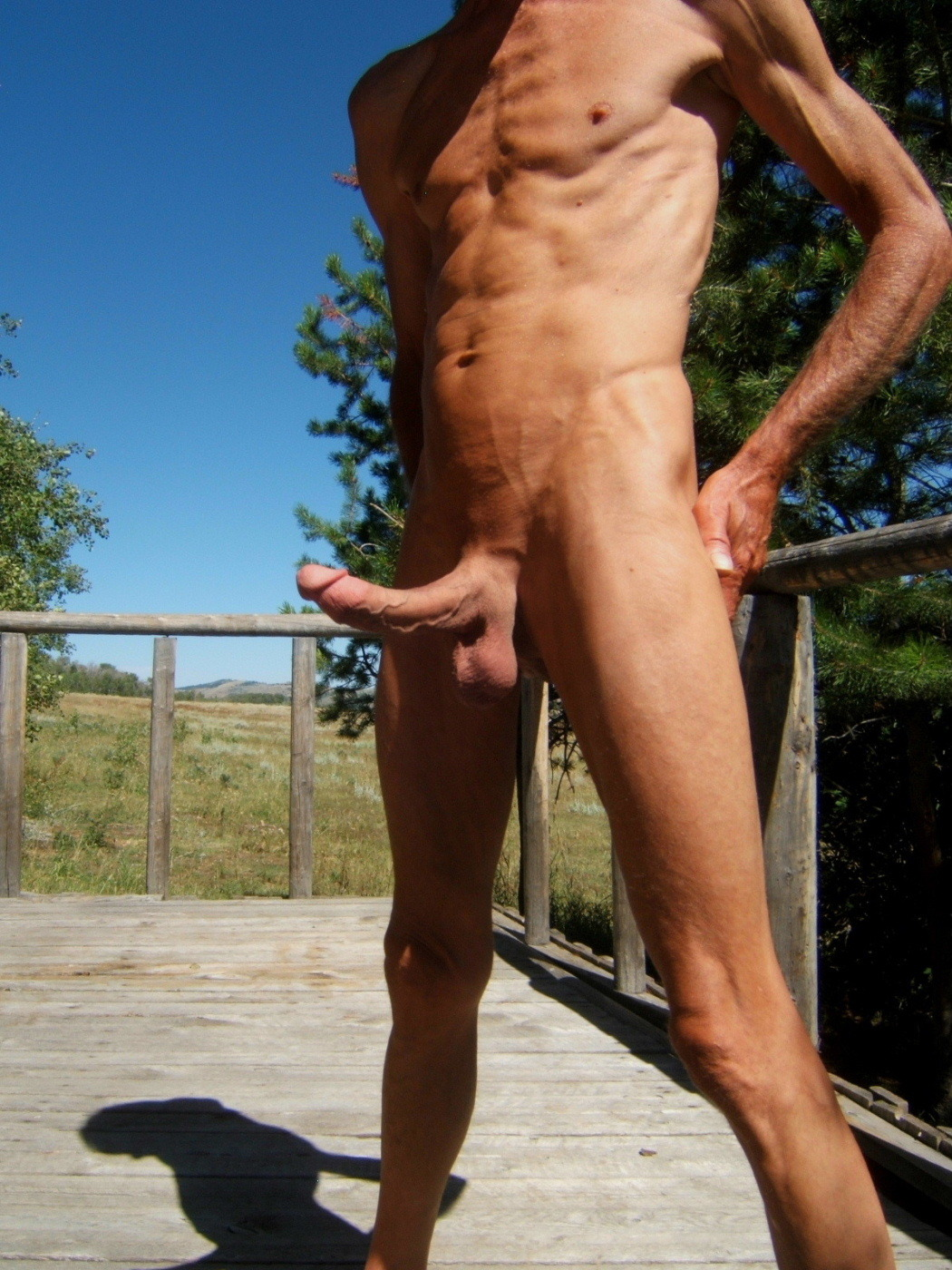 Cocks outdoors erection big