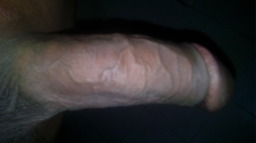Penis ready to fuck