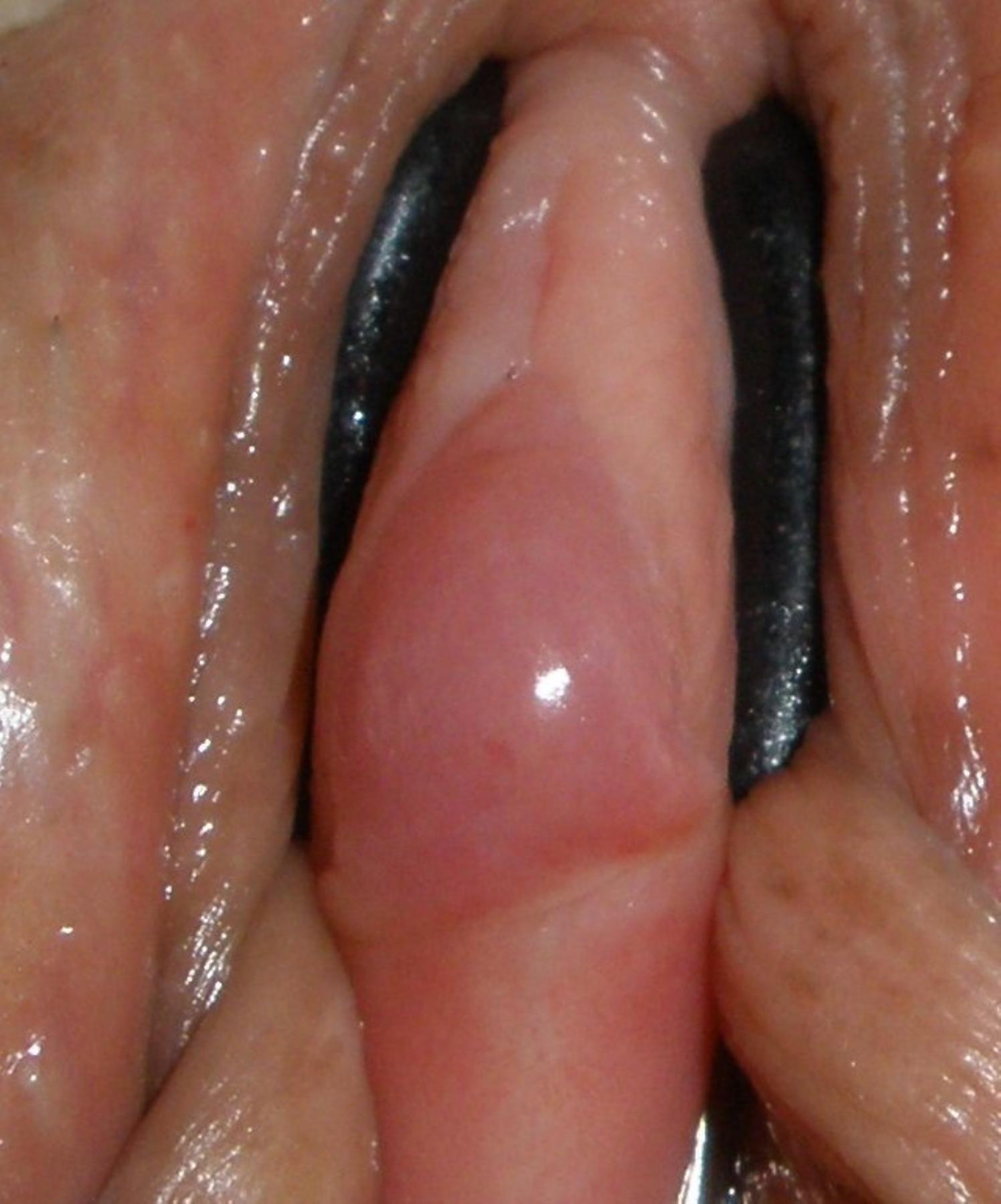 Pity, that Close up swollen clitoris that