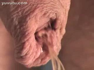Bizzare - long foreskin show
