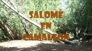 TV - EL BOSQUE DE SALOME