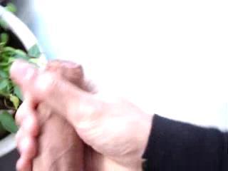 - regando las plantitas
