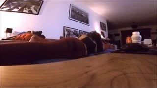 Webcam - Beurette salope qui recoit a domicile