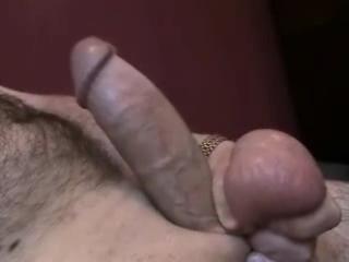 X gay hamster