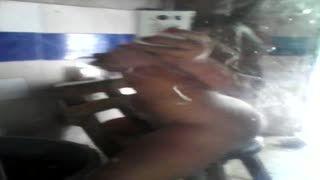 - Mi primer video