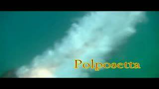 Missionary - polposetta soft