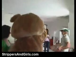 Striptease - Dancing bear party with facial on girls in the a...