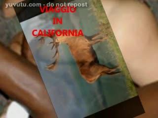 Missionnaire - california