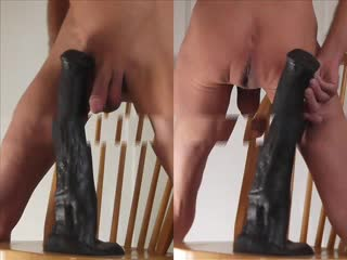 Bizzare - Anal and a Big Black Horse Cock