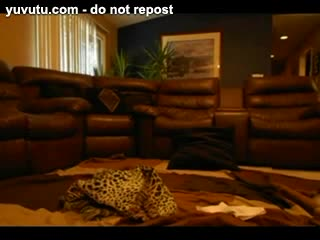 Cornudo consentido - BBC for Blindfolded Hot Wife