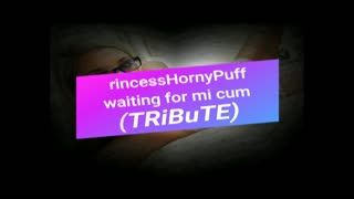 - PrincessHornyPuff waiting for my cum (TRiBuTE) (...