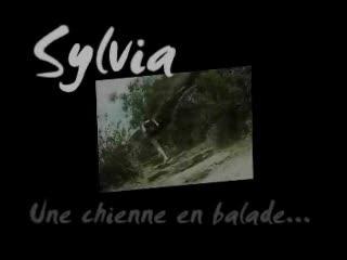 Gang Bang - Sylvia